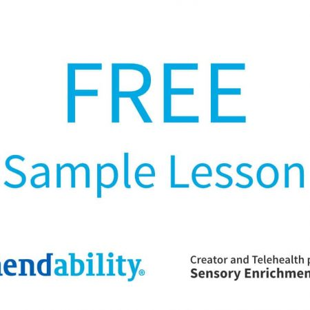 Free Sample Lesson Sensory Enrichment Therapy